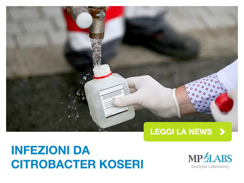 MP Surl - Leggi News: Infezioni Citrobacter Koseri